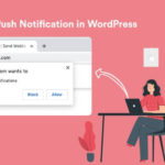 How to Add Web Push Notification to Your WordPress Site? (Step by Step) 11