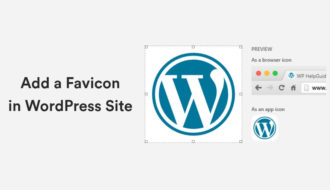 How to Add a Favicon in WordPress Site? 25