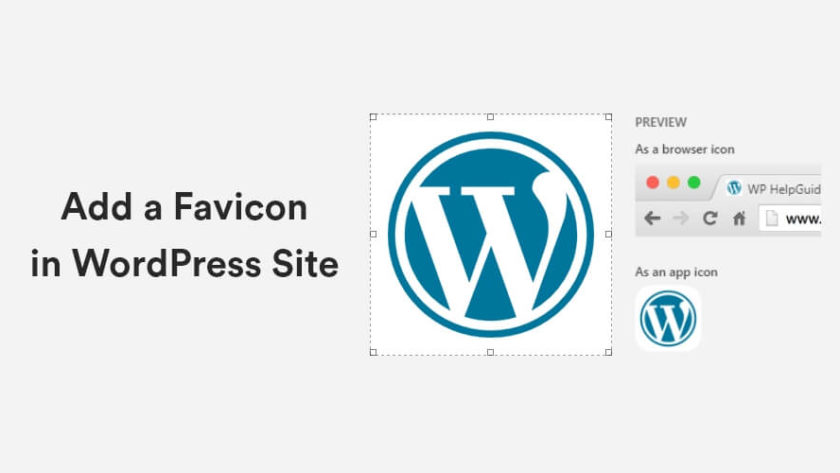 How to Add a Favicon in WordPress Site? 1