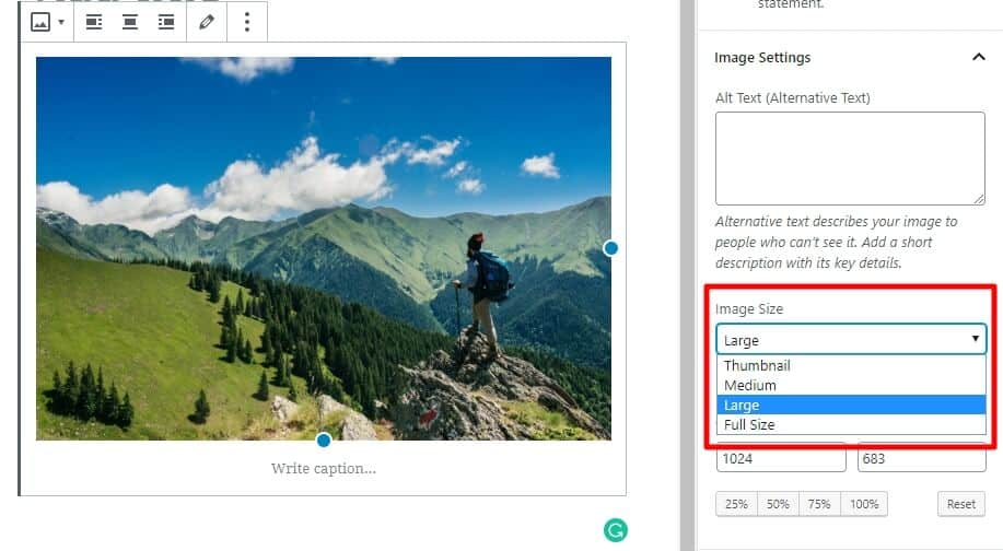 How to Regenerate Thumbnails in WordPress 3
